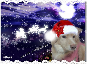 Christmas200801